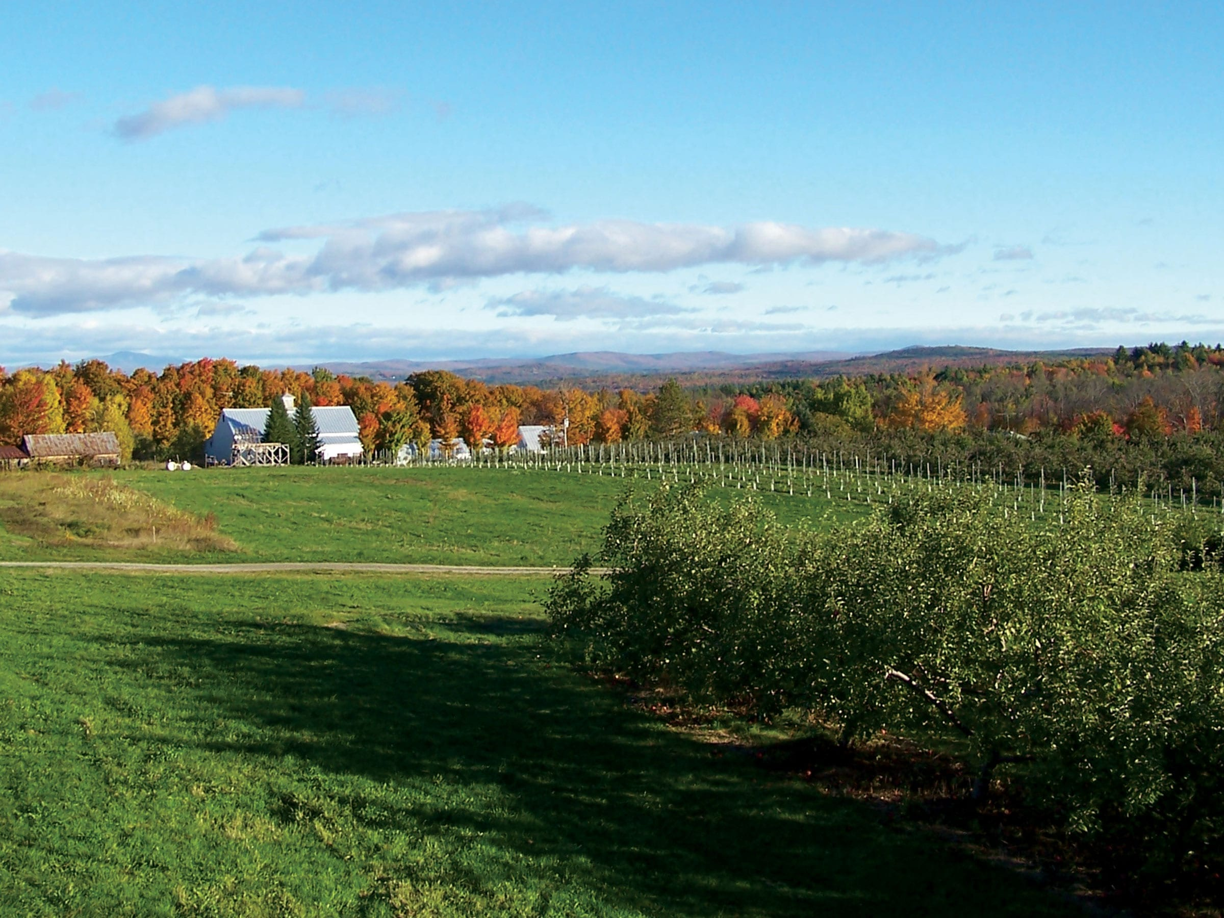 Small town charm, Orchard in the town of Madison, maine's kennebec valley